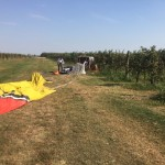 Landing in Italian Vineyard